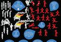 Кровавые события в Мукачево с участием Правого сектора. Инфографика