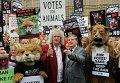 Протест перед зданием парламента в Лондоне в связи с рассмотрением закона об охоте на лис