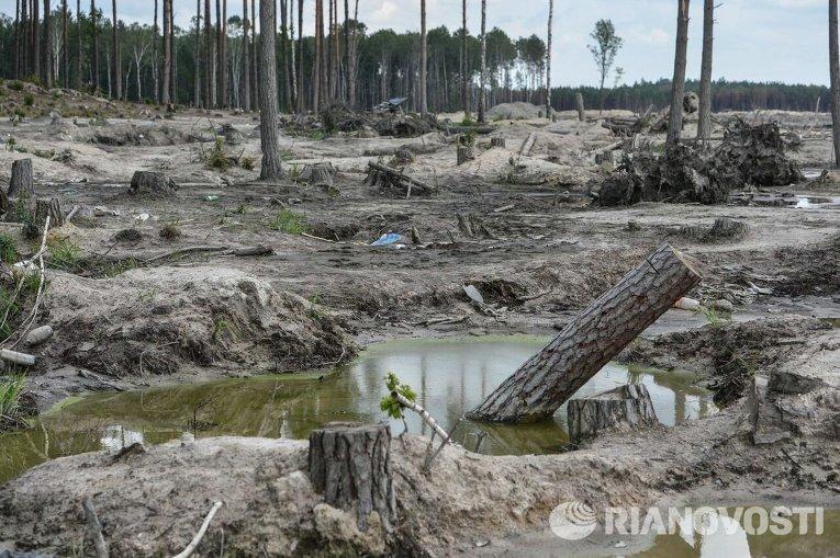 Янтарная лихорадка в Украине