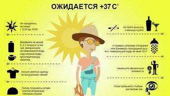 Инфографика. Как вести себя в жару