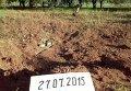 В результате обстрела выведена из строя Углегорская ТЭС