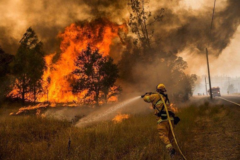 Тушение лесного пожара в графстве Лэйк Каунти в Калифорнии