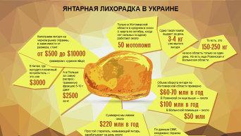 Инфографика. Янтарная лихорадка в Украине