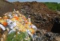 Уничтожение запрещенного к ввозу в Россию импортного сыра. Архивное фото