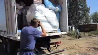 Уничтожение сала в Калининграде. Видео