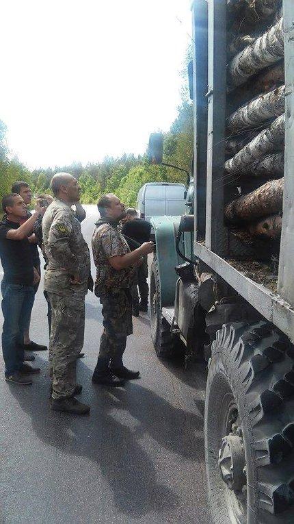 Незаконная вырубка леса в Житомирской области