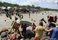Нелегальные колумбийские мигранты бегут из Венесуэлы, боясь преследований
