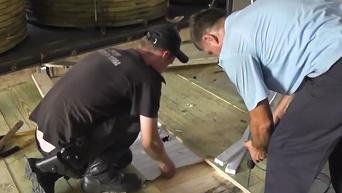 Задержание контрабандных сигарет на границе со Словакией. Видео