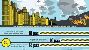 Киев в дыму из-за лесного пожара. Инфографика