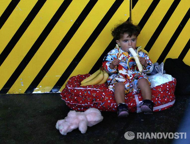 Беженцы из стран Ближнего Востока на станции Уэст Банкхоф в Вене