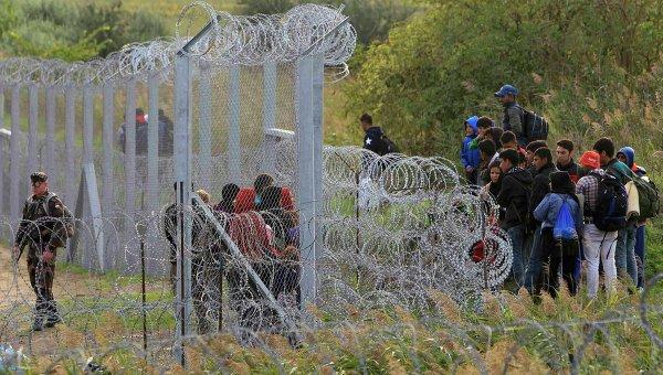 Нелегальные мигранты на венгерско-сербской границе