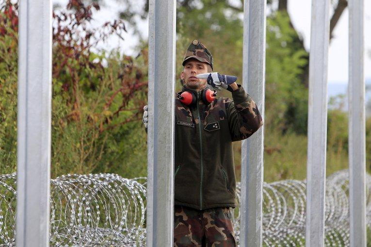 Венгрия строит забор от мигрантов на границе с Хорватией