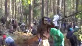 Массовое задержание незаконных добытчиков янтаря на Волыни. Видео