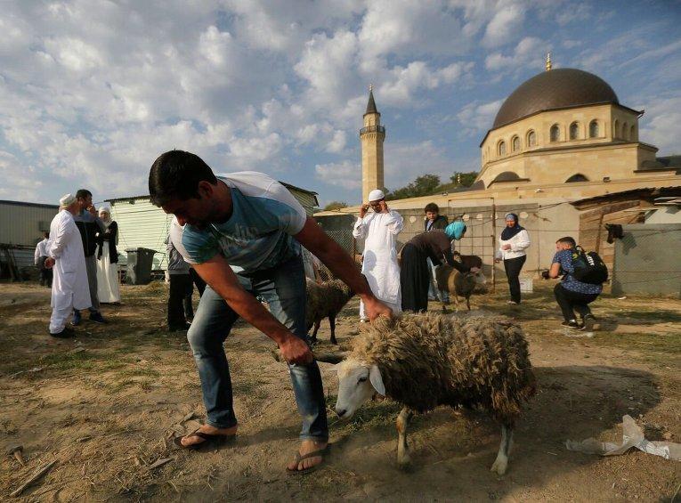 Главная традиция праздника - жертвоприношение барашка
