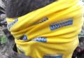 Кадры задержания Надежды Савченко. Видео