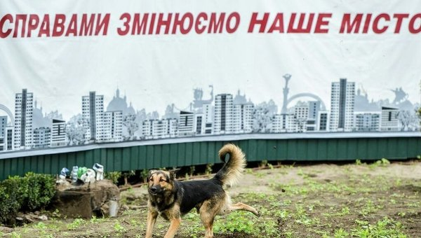 Политическая реклама в Киеве