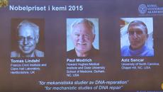 Томас Линдаль, Пол Модрич и Азиз Санкар (Нобелевская премия по химии-2015)