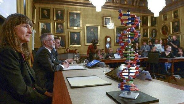 Модель ДНР стоит на столе Нобелевского комитета в Стокгольме, где премия по химии была присуждена за исследование репараций ДНК
