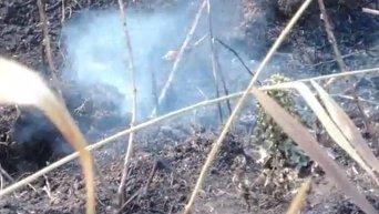 Тление торфяников в Киевской области