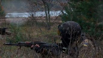 Батальонно-тактические учения 95 аэромобильной бригады ВДВ возле Житомира. Видео