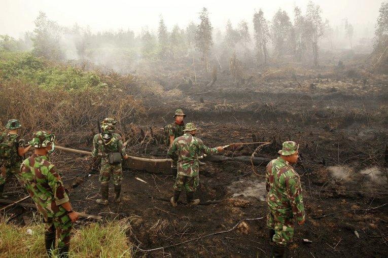 Пожар на торфяниках в Индонезии