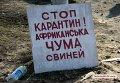Борьба с АЧС во Врадиевке Николаевской области